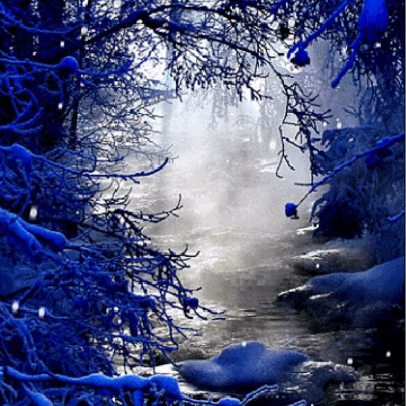 misty river surrounded by snowy trees