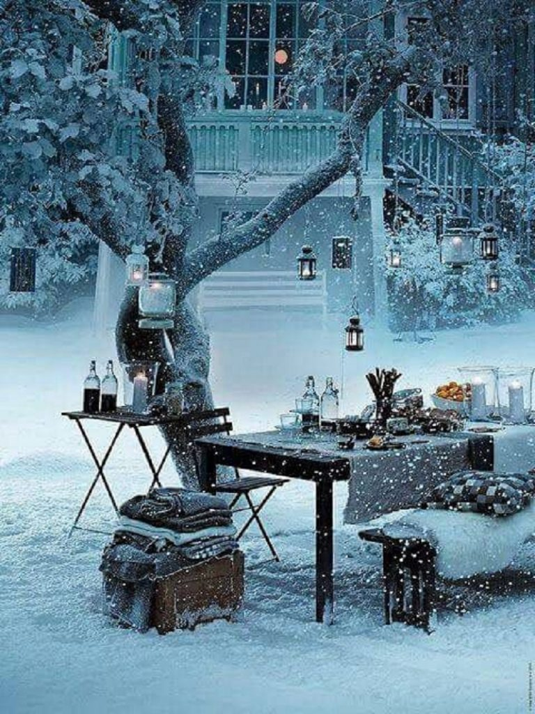 picnic snow lights